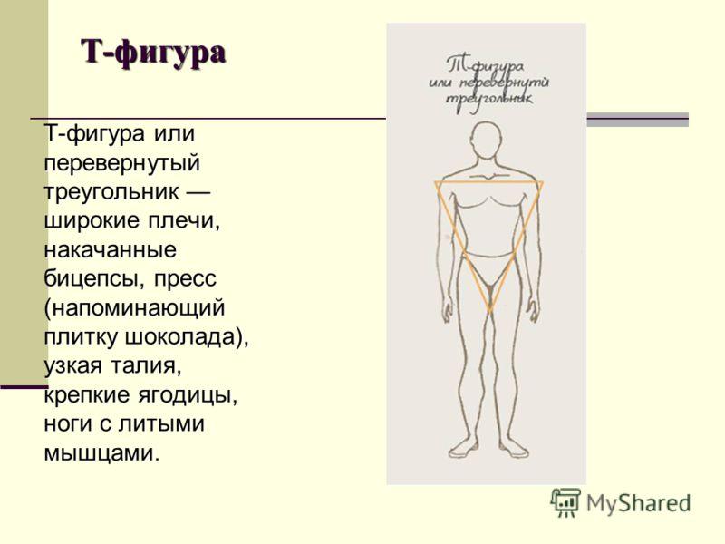 Т-фигура Т-фигура или перевернутый треугольник широкие плечи, накачанные бицепсы, пресс (напоминающий плитку шоколада), узкая талия, крепкие ягодицы, ноги с литыми мышцами.