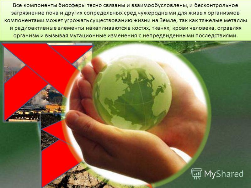 Все компоненты биосферы тесно связаны и взаимообусловлены, и бесконтрольное загрязнение почв и других сопредельных сред чужеродными для живых организмов компонентами может угрожать существованию жизни на Земле, так как тяжелые металлы и радиоактивные