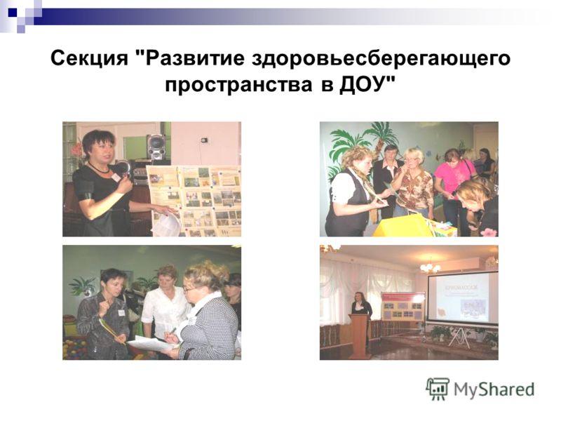 Секция Развитие здоровьесберегающего пространства в ДОУ