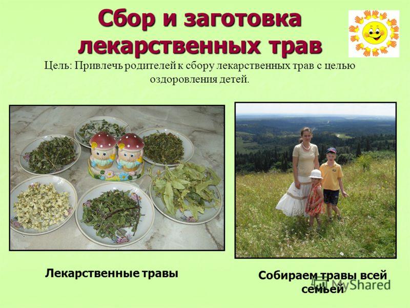 Сбор и заготовка лекарственных трав Сбор и заготовка лекарственных трав Цель: Привлечь родителей к сбору лекарственных трав с целью оздоровления детей. Лекарственные травы Собираем травы всей семьей