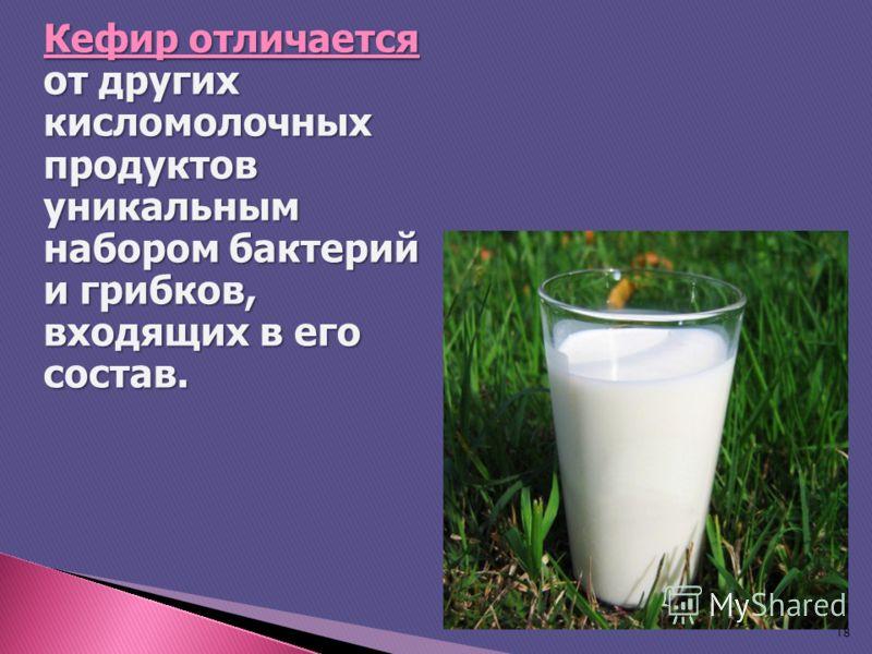 Кефир отличается от других кисломолочных продуктов уникальным набором бактерий и грибков, входящих в его состав. 18