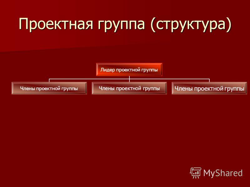 Проектная группа (структура) Лидер проектной группы Члены проектной группы