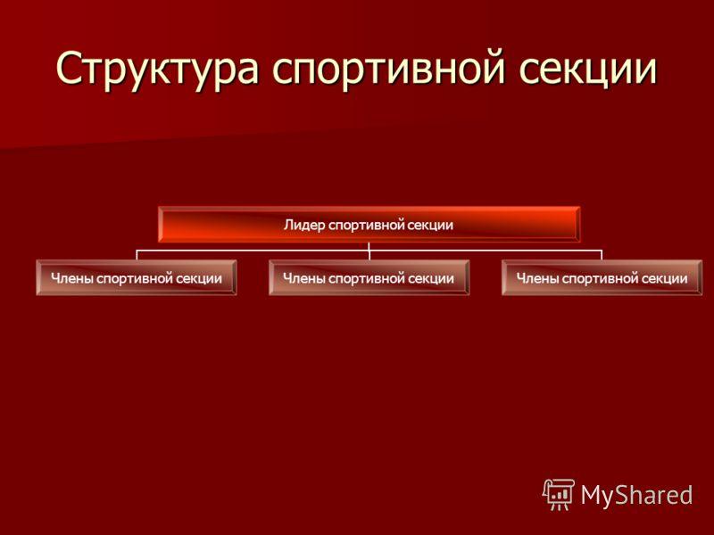 Структура спортивной секции Лидер спортивной секции Члены спортивной секции