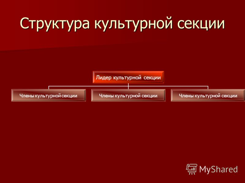 Структура культурной секции Лидер культурной секции Члены культурной секции