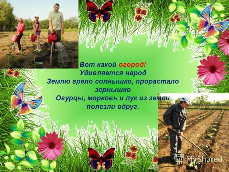 Вот какой огород! Удивляется народ Землю грело солнышко, прорастало зернышко Огурцы, морковь и лук из земли полезли вдруг.