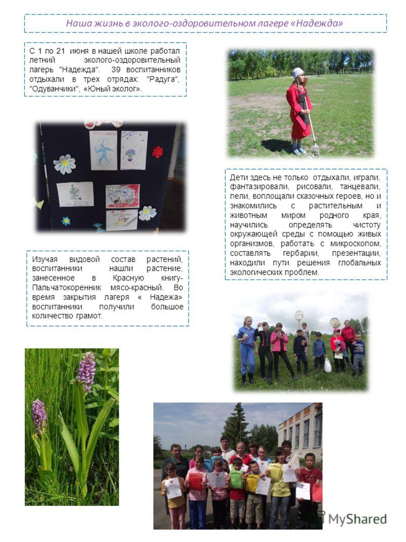 Наша жизнь в эколого-оздоровительном лагере «Надежда» С 1 по 21 июня в нашей школе работал летний эколого-оздоровительный лагерь