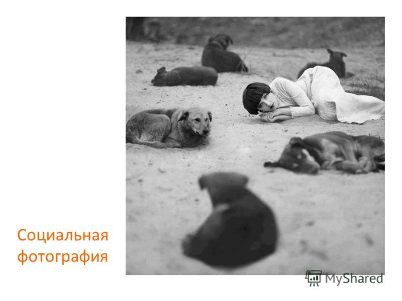 Социальная фотография