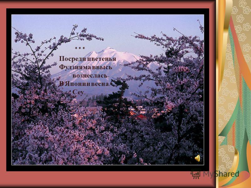 * * * Посреди цветенья Фудзияма ввысь вознеслась - В Японии весна ! Сеу.