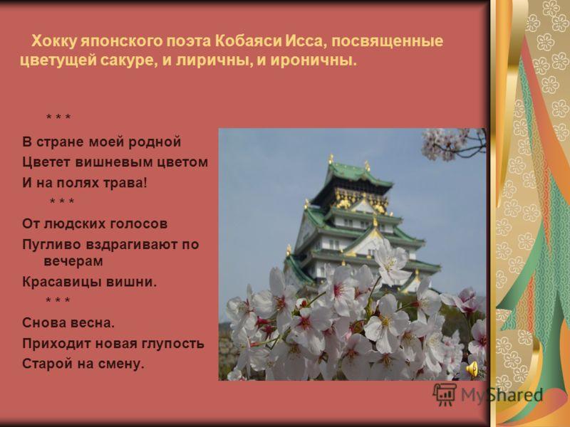 Хокку японского поэта Кобаяси Исса, посвященные цветущей сакуре, и лиричны, и ироничны. * * * В стране моей родной Цветет вишневым цветом И на полях трава! * * * От людских голосов Пугливо вздрагивают по вечерам Красавицы вишни. * * * Снова весна. Пр