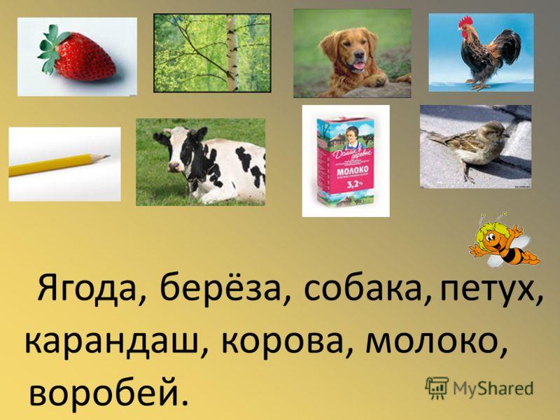 Ягода,берёза,собака,петух, карандаш,корова,молоко, воробей.