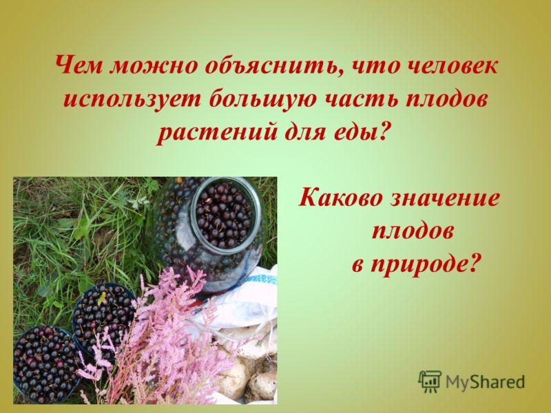 Чем можно объяснить, что человек использует большую часть плодов растений для еды? Каково значение плодов в природе?