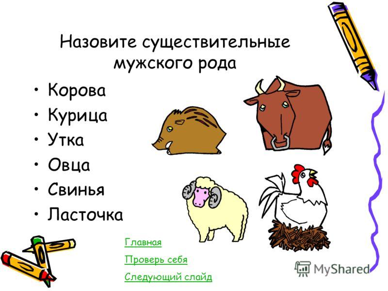Назовите существительные мужского рода Корова Курица Утка Овца Свинья Ласточка Главная Проверь себя Следующий слайд