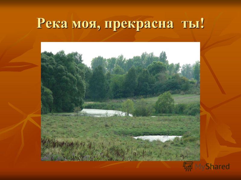 Река моя, прекрасна ты!
