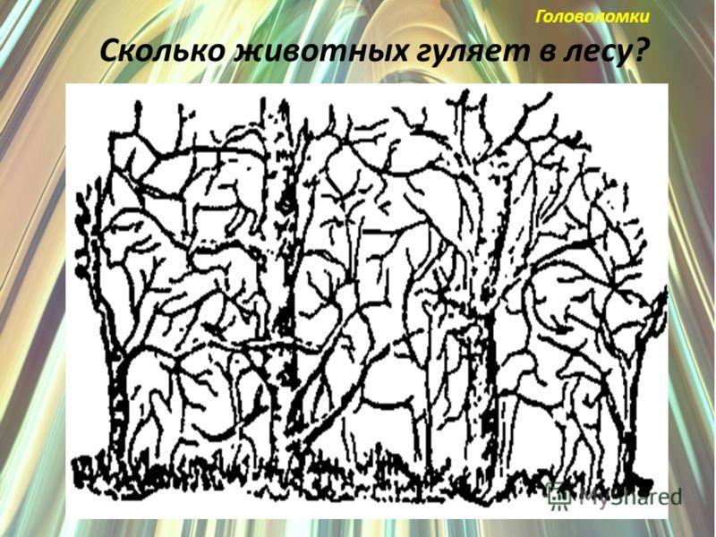 Головоломки Сколько животных гуляет в лесу?