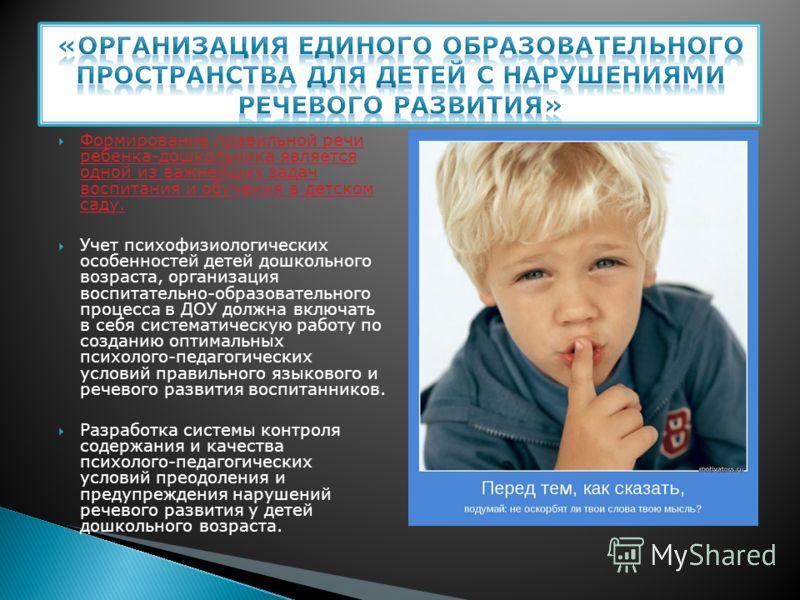 Формирование правильной речи ребенка-дошкольника является одной из важнейших задач воспитания и обучения в детском саду. Учет психофизиологических особенностей детей дошкольного возраста, организация воспитательно-образовательного процесса в ДОУ долж