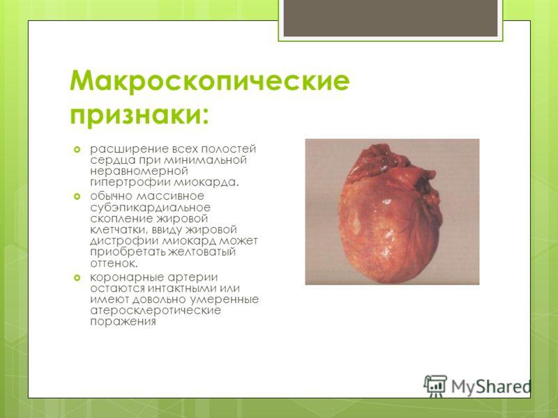 Макроскопические признаки: расширение всех полостей сердца при минимальной неравномерной гипертрофии миокарда. обычно массивное субэпикардиальное скопление жировой клетчатки, ввиду жировой дистрофии миокард может приобретать желтоватый оттенок. корон