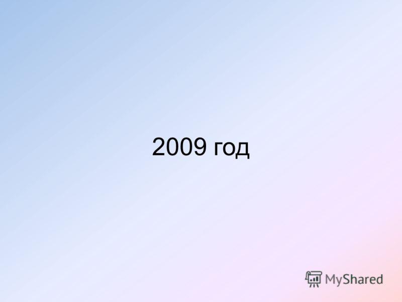 2009 год