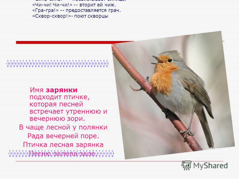 Разные птицы подают голос по-разному. Из звуков, которые они издают, и образовались названия многих птиц. «Синь-синь!» -- посвистывает синица. «Чи-чи! Чи-чи!» -- вторит ей чиж. «Гра-гра!» -- предоставляется грач. «Сквор-сквор!»- поют скворцы Имя заря