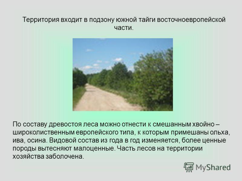 Территория входит в подзону южной тайги восточноевропейской части. По составу древостоя леса можно отнести к смешанным хвойно – широколиственным европейского типа, к которым примешаны ольха, ива, осина. Видовой состав из года в год изменяется, более