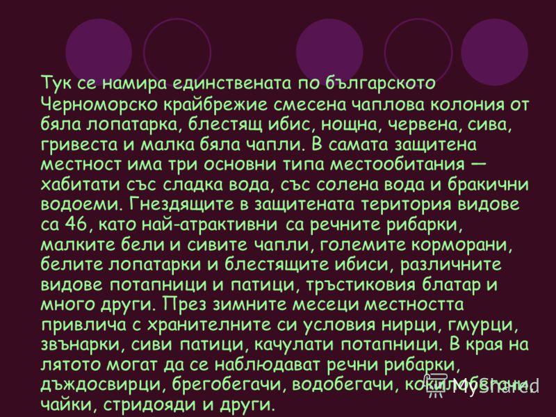 Тук се намира единствената по българското Черноморско крайбрежие смесена чаплова колония от бяла лопатарка, блестящ ибис, нощна, червена, сива, гривеста и малка бяла чапли. В самата защитена местност има три основни типа местообитания хабитати със сл