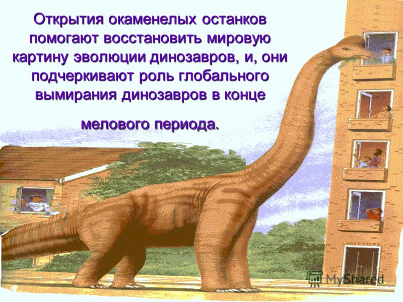 Открытия окаменелых останков помогают восстановить мировую картину эволюции динозавров, и, они подчеркивают роль глобального вымирания динозавров в конце мелового периода.