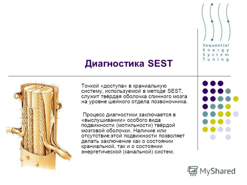 Диагностика SEST Точкой «доступа» в краниальную систему, используемой в методе SEST, служит твёрдая оболочка спинного мозга на уровне шейного отдела позвоночника. Процесс диагностики завключается в «выслушивании» особого вида подвижности (мобильности