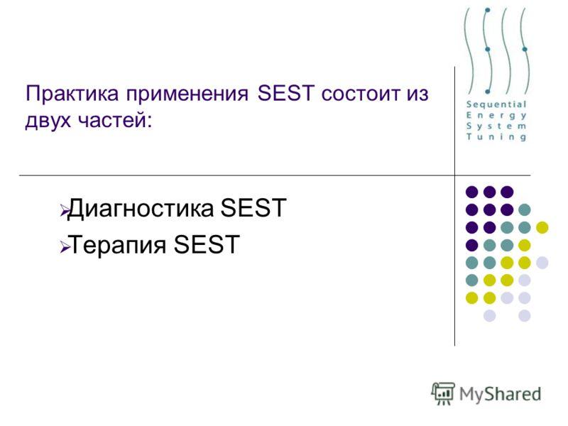 Практика применения SEST состоит из двух частей: Диагностика SEST Терапия SEST