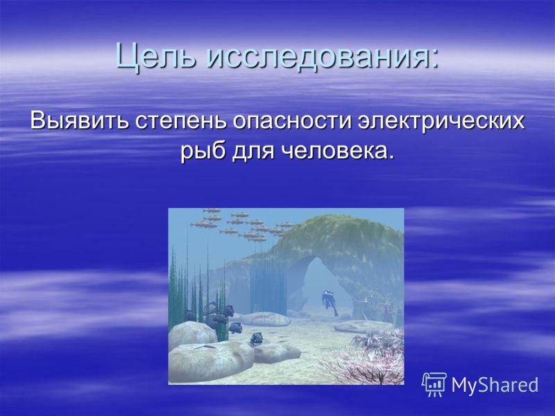 Цель исследования: Выявить степень опасности электрических рыб для человека.