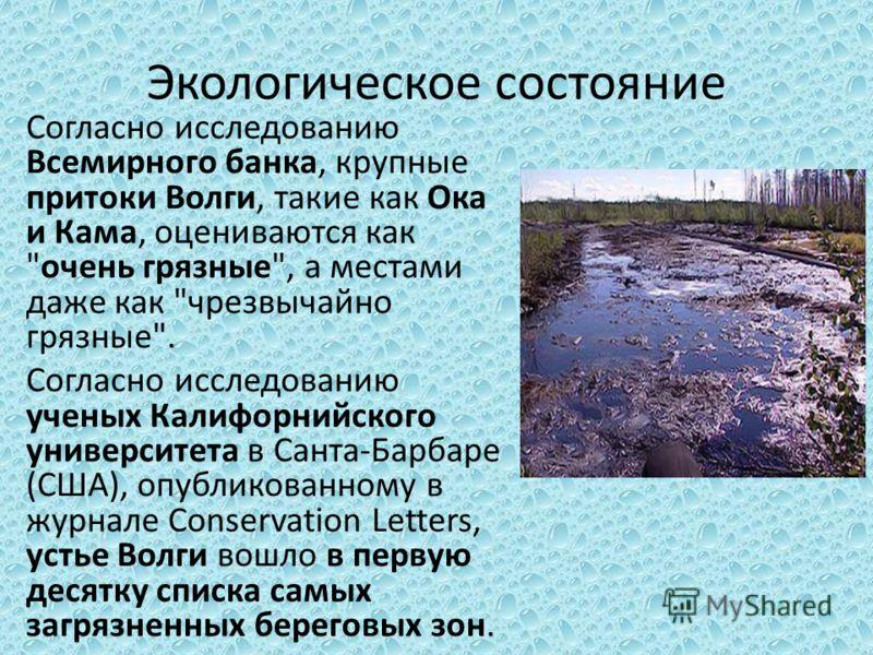 Экологическое состояние Согласно исследованию Всемирного банка, крупные притоки Волги, такие как Ока и Кама, оцениваются как