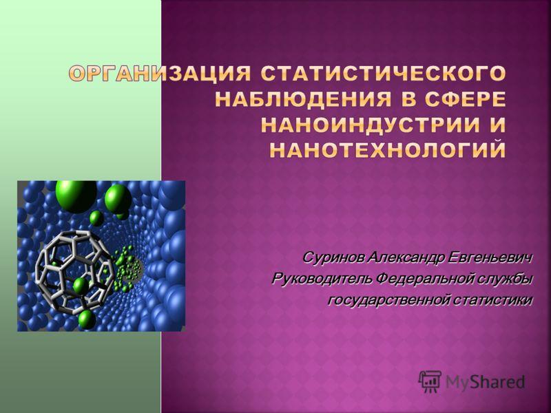 Суринов Александр Евгеньевич Руководитель Федеральной службы государственной статистики