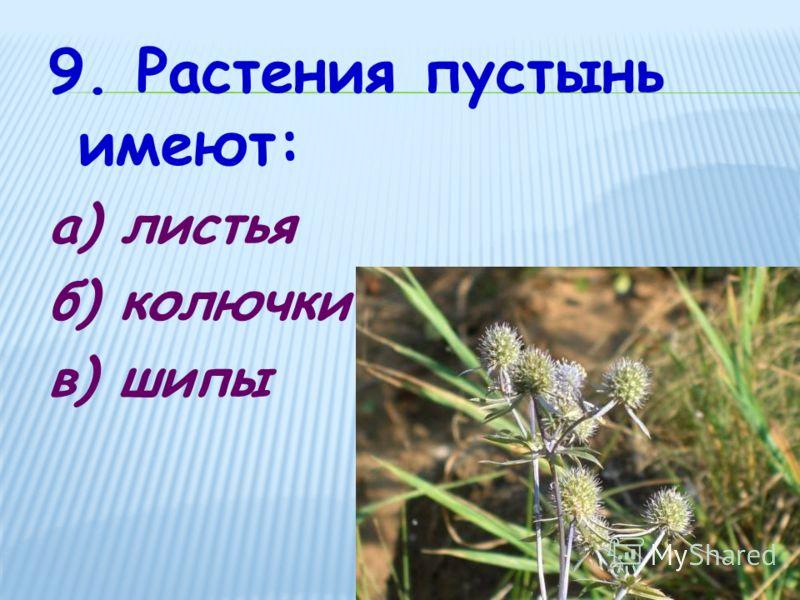 9. Растения пустынь имеют: а) листья б) колючки в) шипы