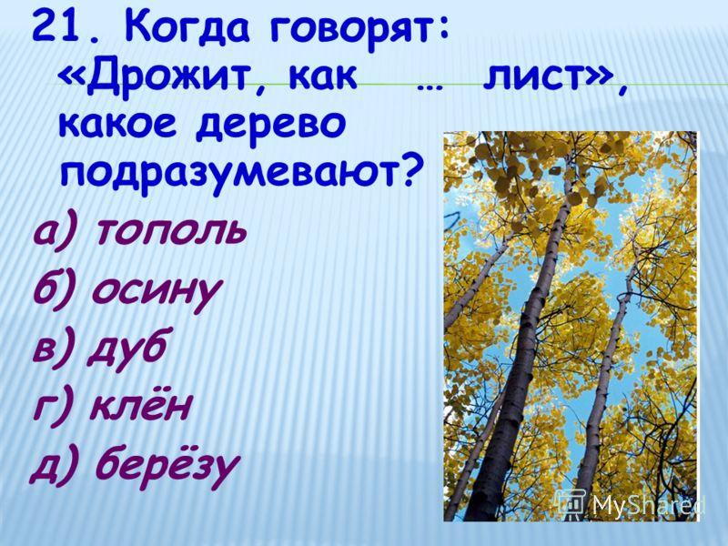 21. Когда говорят: «Дрожит, как … лист», какое дерево подразумевают? а) тополь б) осину в) дуб г) клён д) берёзу