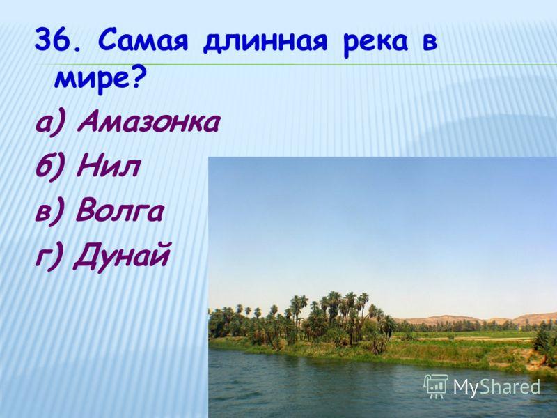 36. Самая длинная река в мире? а) Амазонка б) Нил в) Волга г) Дунай