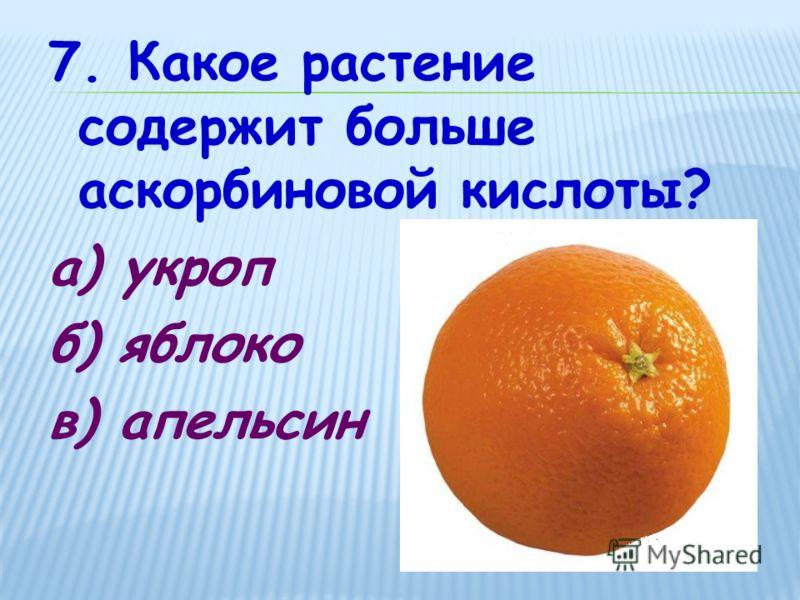 7. Какое растение содержит больше аскорбиновой кислоты? а) укроп б) яблоко в) апельсин