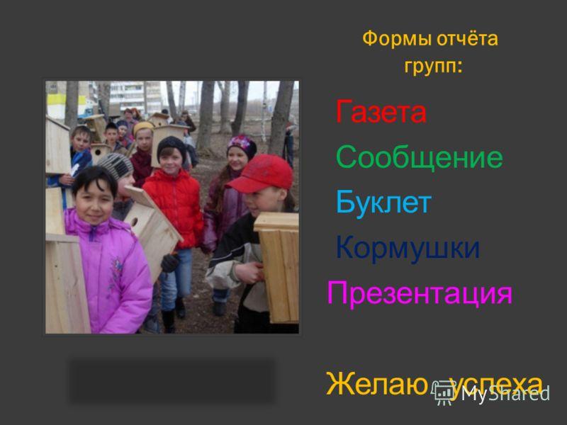 Формы отчёта групп: Газета Сообщение Буклет Кормушки Презентация Желаю успеха