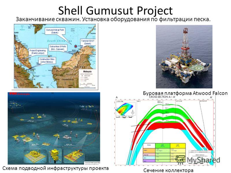 Shell Gumusut Project Заканчивание скважин. Установка оборудования по фильтрации песка. Сечение коллектора Буровая платформа Atwood Falcon Схема подводной инфраструктуры проекта