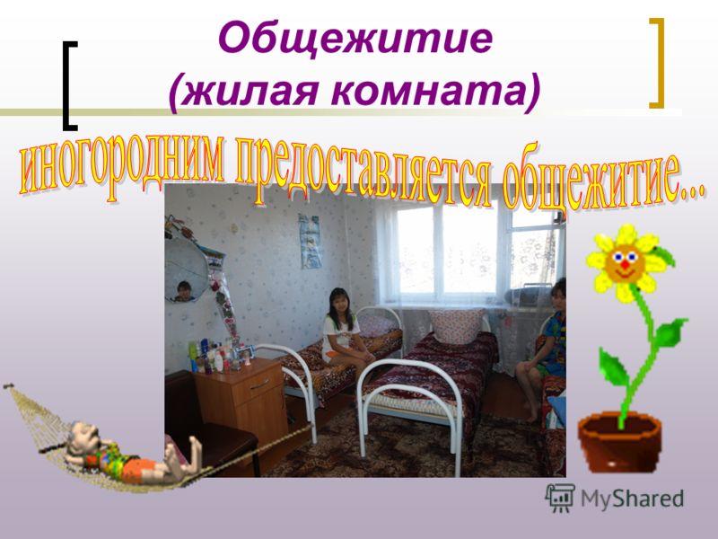 Общежитие (жилая комната)