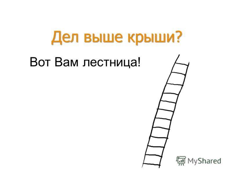 Вот Вам лестница! Дел выше крыши?