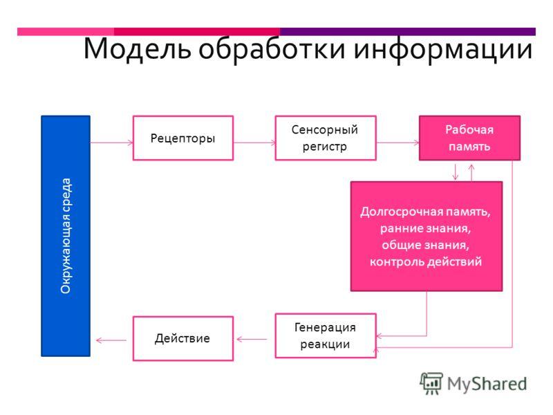 Модель обработки информации Окружающая среда Рецепторы Сенсорный регистр Рабочая память Долгосрочная память, ранние знания, общие знания, контроль действий Генерация реакции Действие