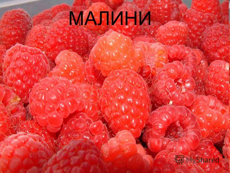 МАЛИНИ