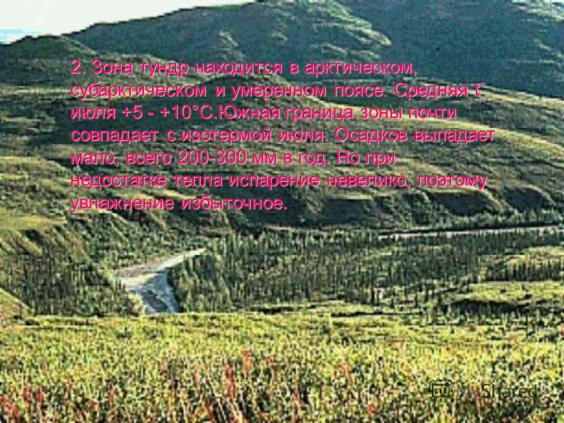 2. Зона тундр находится в арктическом, субарктическом и умеренном поясе. Средняя t˚ июля +5 - +10°С.Южная граница зоны почти совпадает с изотермой июля. Осадков выпадает мало, всего 200-300 мм в год. Но при недостатке тепла испарение невелико, поэтом