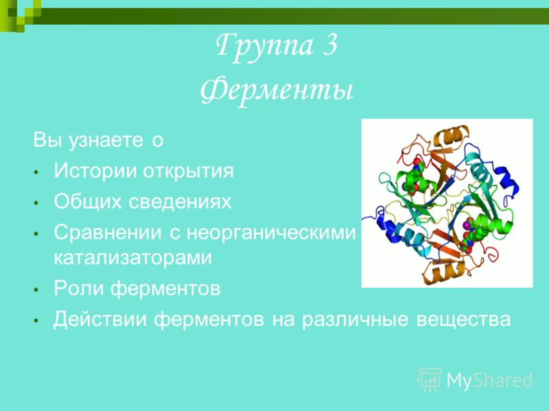 Группа 3 Ферменты Вы узнаете о Истории открытия Общих сведениях Сравнении с неорганическими катализаторами Роли ферментов Действии ферментов на различные вещества