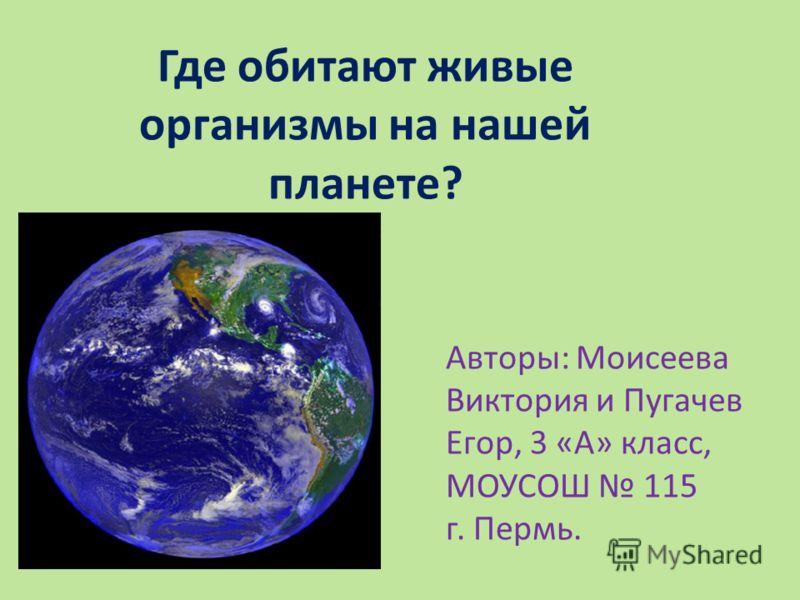 Где обитают живые организмы на нашей планете? Авторы: Моисеева Виктория и Пугачев Егор, 3 «А» класс, МОУСОШ 115 г. Пермь.