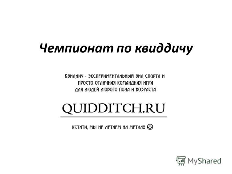Чемпионат по квиддичу