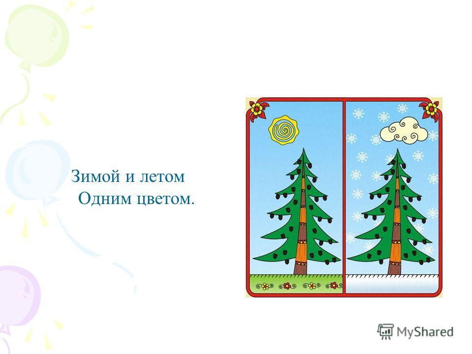 Зимой и летом Одним цветом.