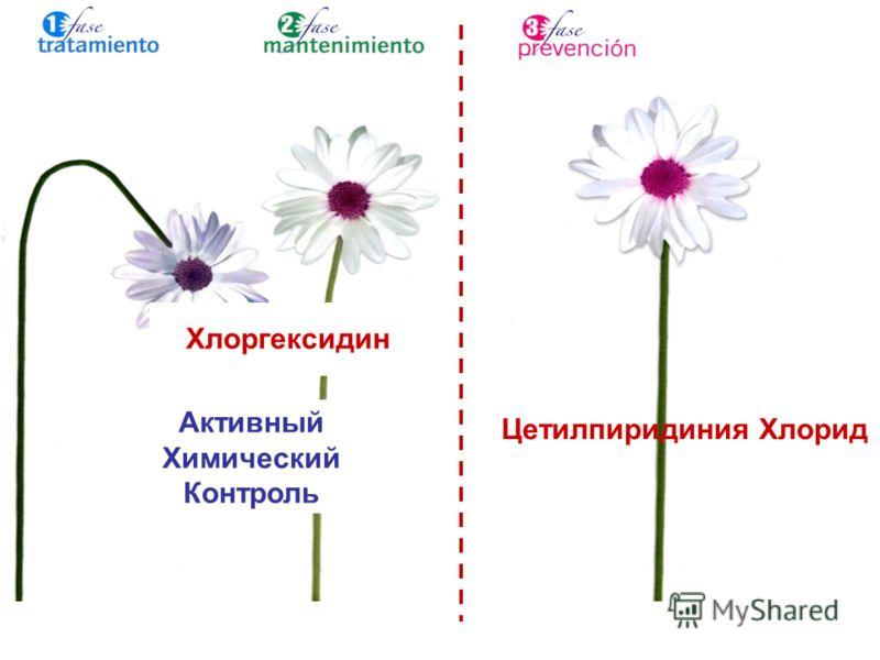 Цетилпиридиния Хлорид Хлоргексидин Активный Химический Контроль