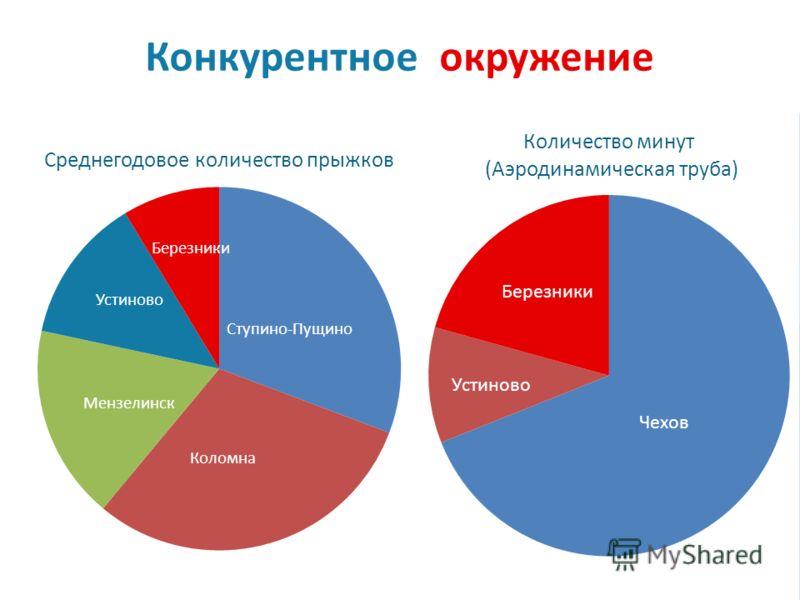 Конкурентное окружение Мензелинск Чехов Березники Устиново