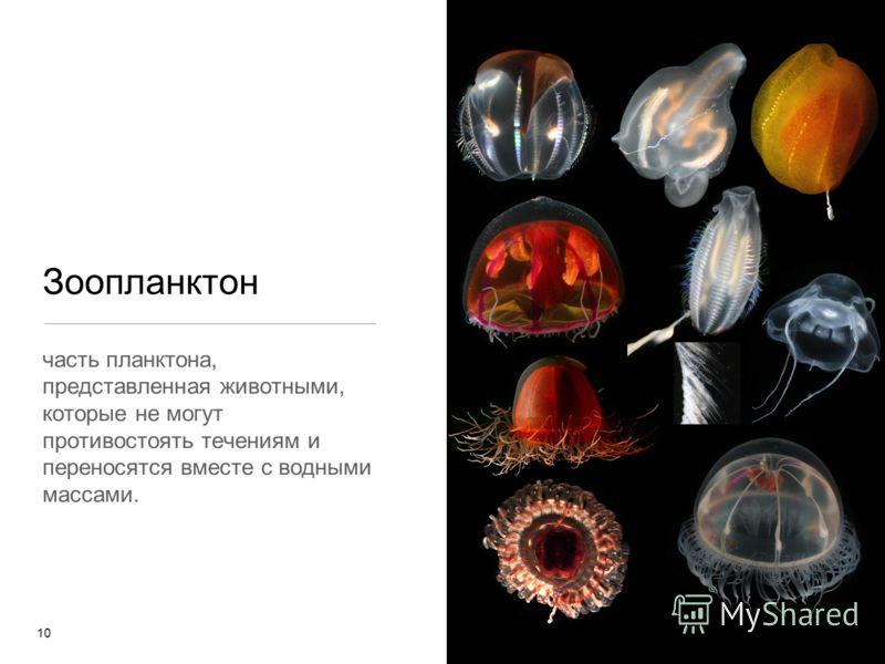 Зоопланктон часть планктона, представленная животными, которые не могут противостоять течениям и переносятся вместе с водными массами. 10