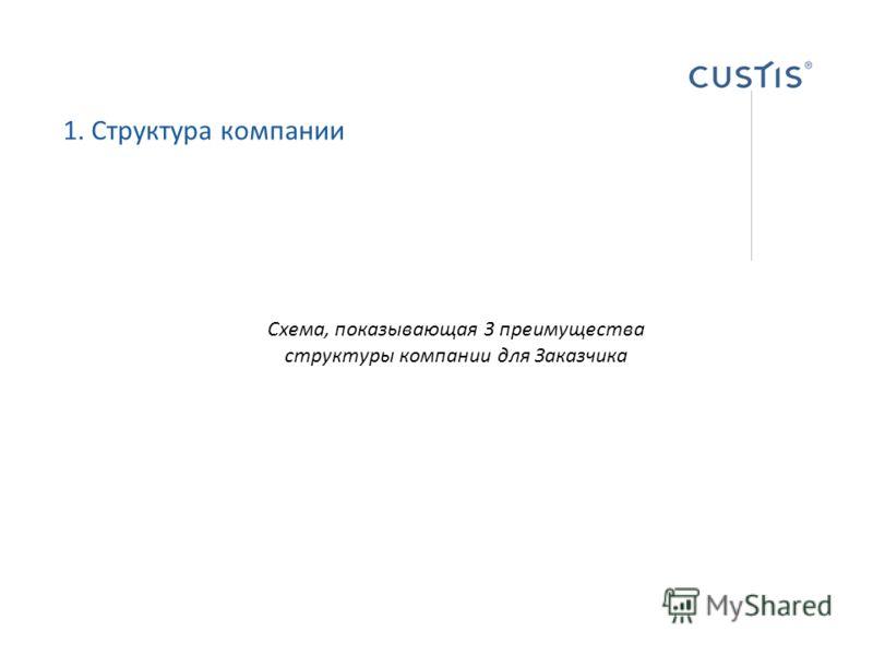1. Структура компании Схема, показывающая 3 преимущества структуры компании для Заказчика