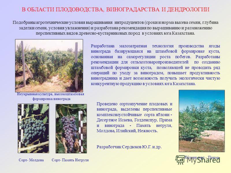 В ОБЛАСТИ ПЛОДОВОДСТВА, ВИНОГРАДАРСТВА И ДЕНДРОЛОГИИ Подобраны агротехнические условия выращивания интродуцентов (сроки и норма высева семян, глубина заделки семян, условия увлажнения) и разработана рекомендация по выращиванию и размножению перспекти